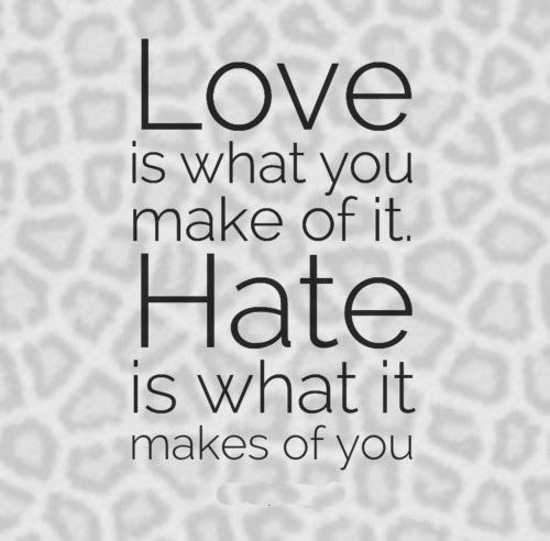 Love Is What You Make Of It Hate Is What It Makes Of You Love