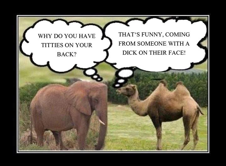 really funny sex jokes