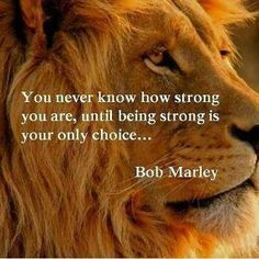 as the quote says description 30 famous bob marley quotes