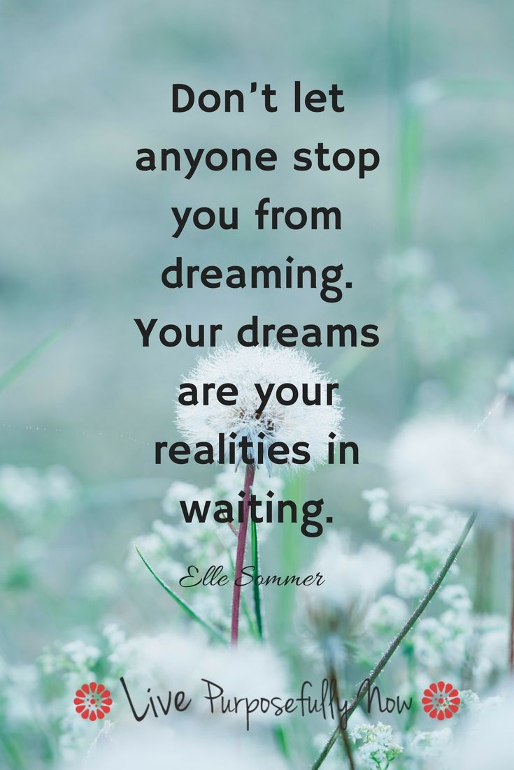 Success Quotes You Have To Have A Dream To Have It Come True