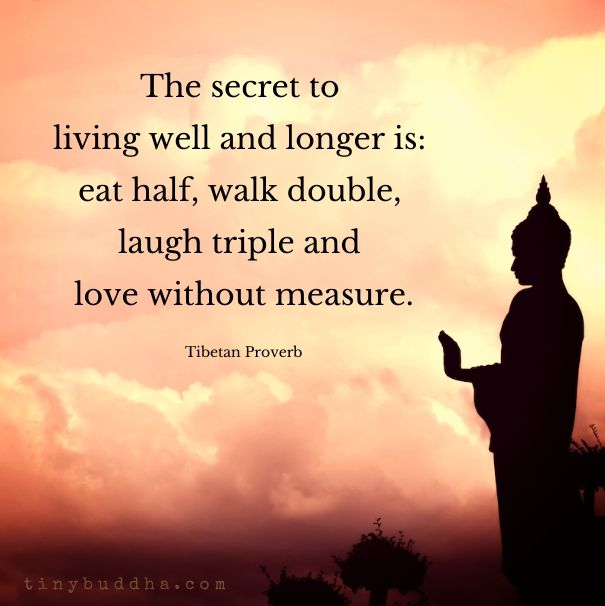 Buddhist Quotes On Love Fascinating Wisdom Quotes  Fun Quotes Of The Day  Your Daily Dose Of
