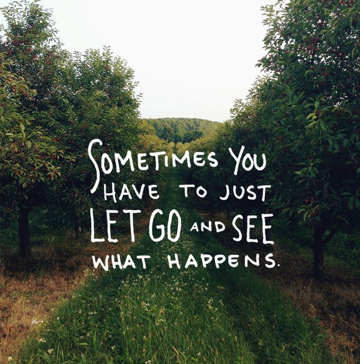 Sometimes You Have To Just Let Go And See What Happens Quotes