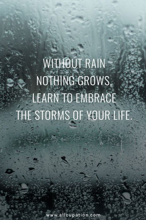 success quotes embrace the storm quotes of the day your daily