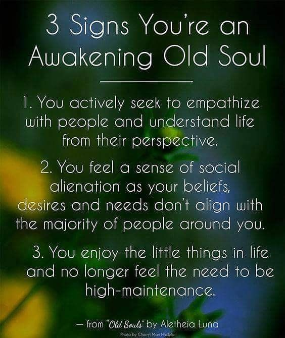 Old Soul Quotes Of The Day Your Daily Dose Of Short Quotes