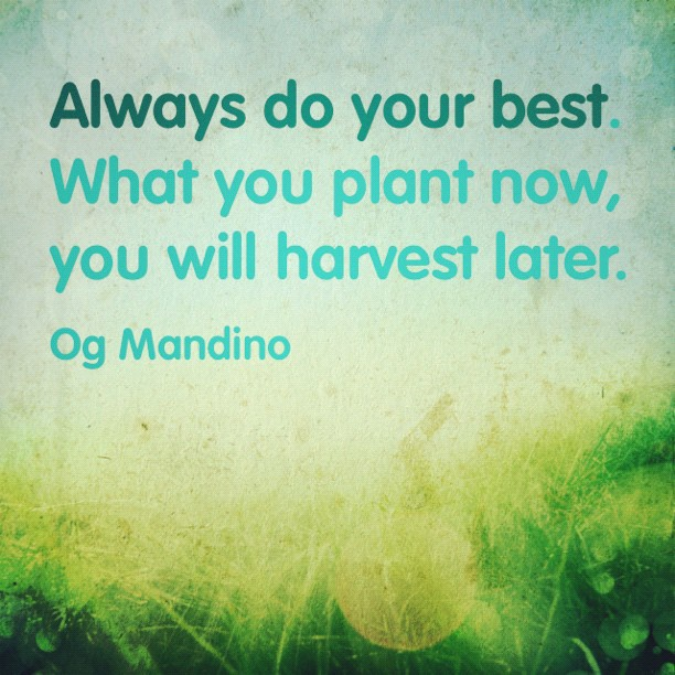 Wisdom Quotes Quotes Always Do Your Best What You Plant Now