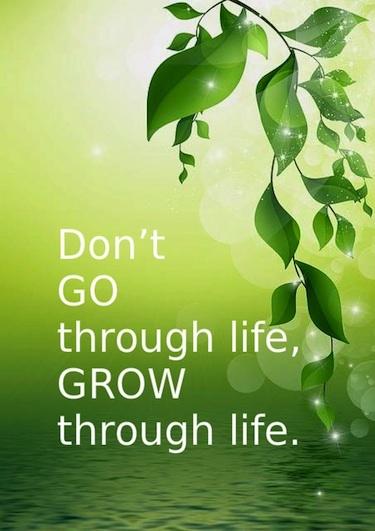 As The Quote Says U2013 Description. Grow Through Life ...