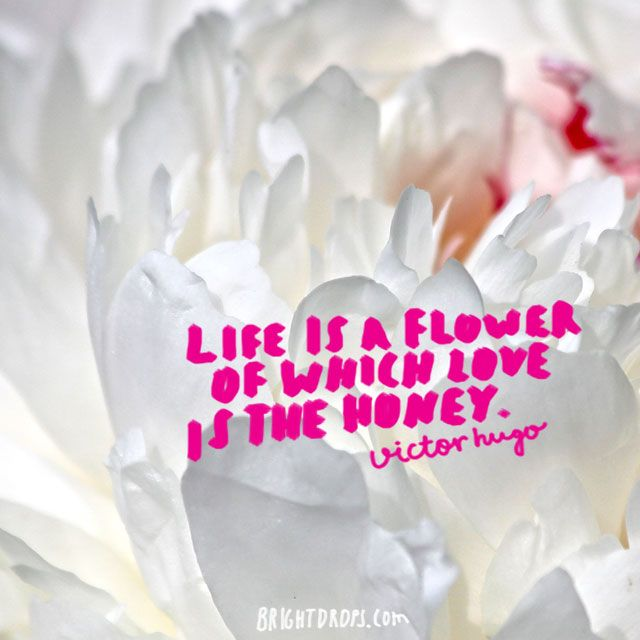 Image of: Sad life Is Flower Of Which Love Is The Honey Victor Hugo Brainy Quote Life Is Flower Of Which Love Is The Honey Victor Hugo Quotes