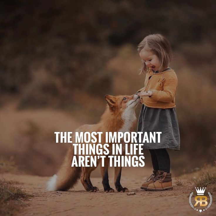 Success Quotes The Most Important Things In Life Arent Things