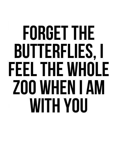 Love Quotes Love Quotes Forget The Butterflies I Feel The Whole