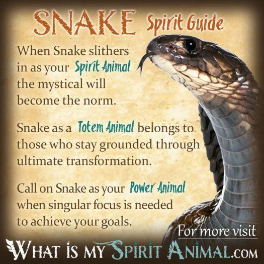 Success Quotes Snake Spirit Totem Power Animal Symbolism Meaning