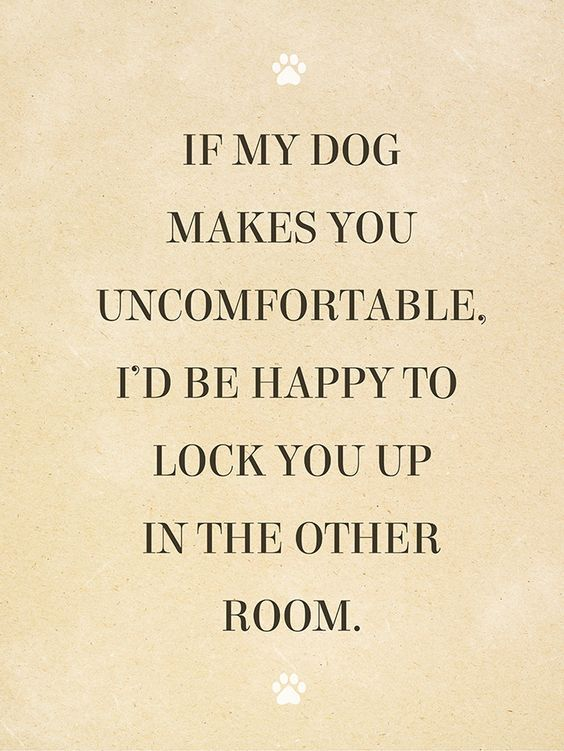 Inspirational And Motivational Quotes 60 Amazing Quotes for Dog Interesting Amazing Quotes