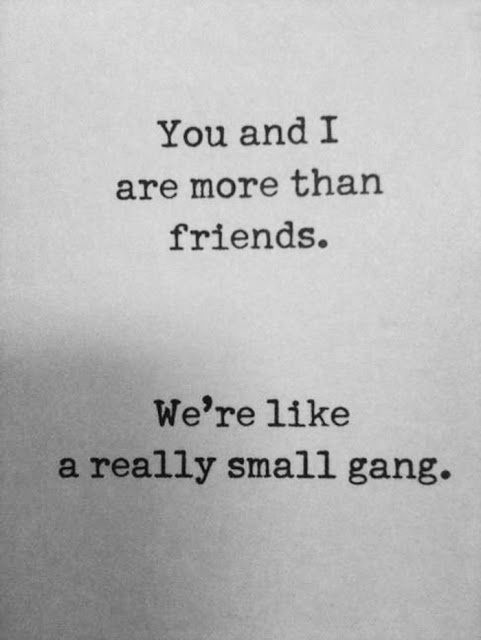 More Than Friends Quotes Quote Friends Friendship Quotes Funny Adorable Friends Quotes And Sayings