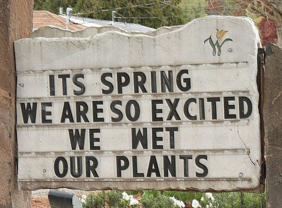 Funny Spring Quotes Best Funny Quotes : It's Spring | Quotes of the Day | Your daily  Funny Spring Quotes