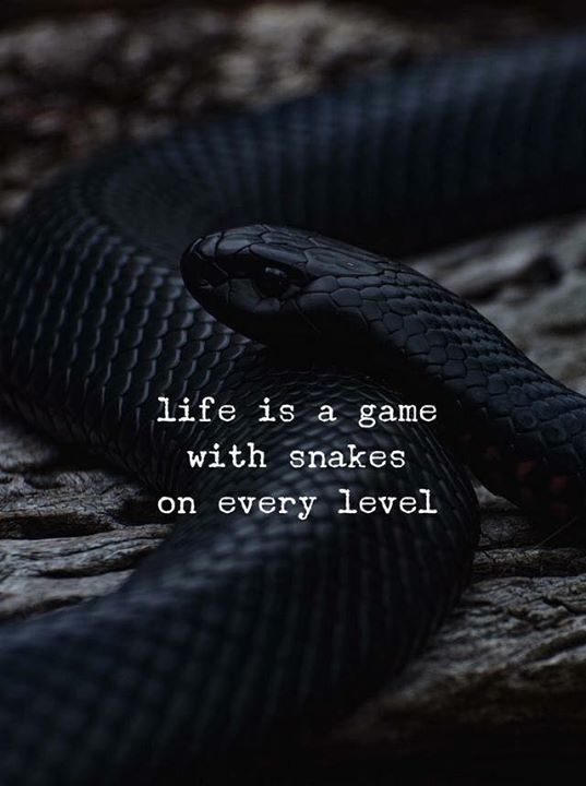Best Positive Quotes Life Is A Game With Snakes On Every Level Extraordinary Best Quote For Life