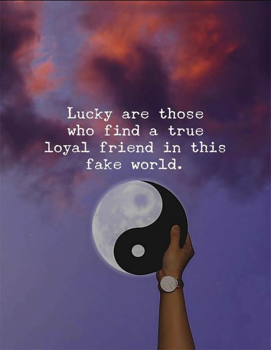 Best Positive Quotes : Lucky are those who fond a true loyal