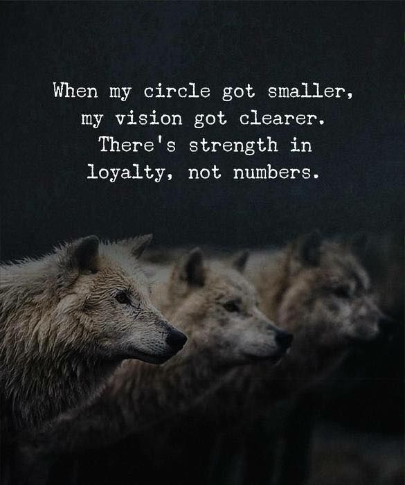 Best Positive Quotes When My Circle Got Smaller My Vision Got