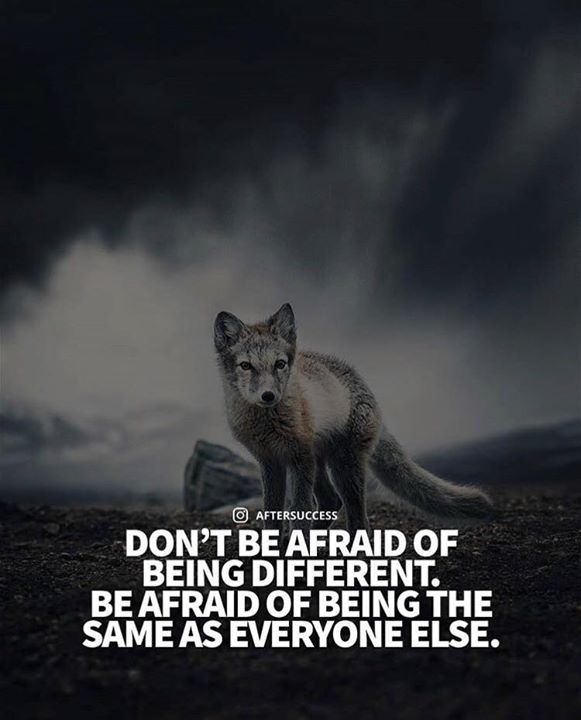 Best Positive Quotes Dont Be Afraid Of Being Different Quotes