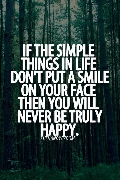 Wisdom Quotes If The Simple Things In Life Quotes Of The Day