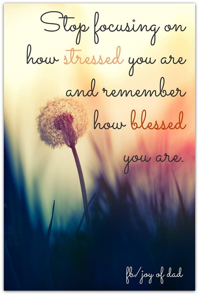 Image of: God Bless As The Quote Says Description Quotes Of The Day Success Quotes Focus On How Blessed You Are Instead Of How