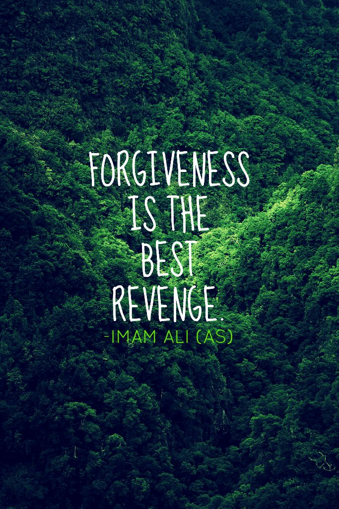Success Quotes Forgiveness Is The Best Revenge Imam Ali As
