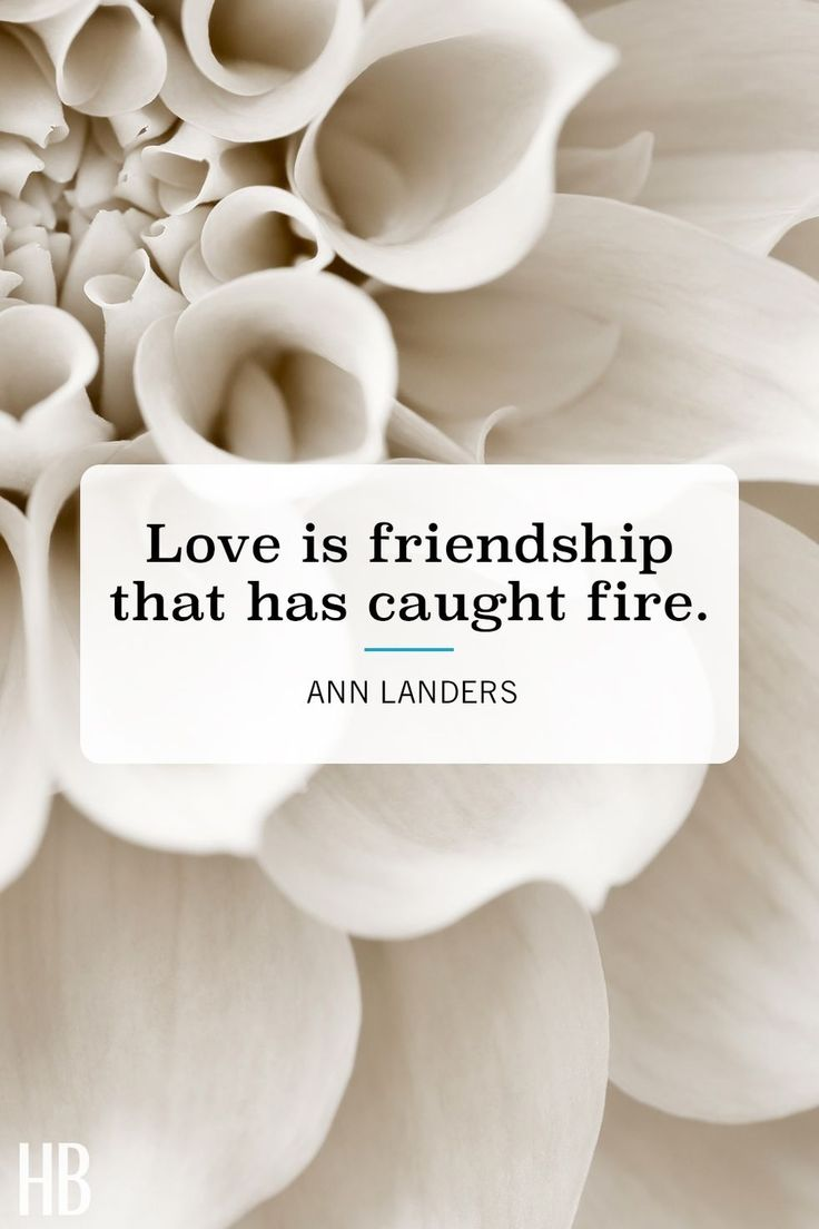Valentines Day Quotes Love Is Friendship That Has Caught Fire